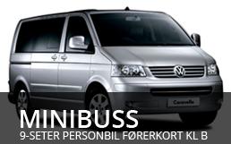 Minibuser
